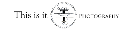 San Francisco Wedding photographer | Bay Area Wedding Photographer logo