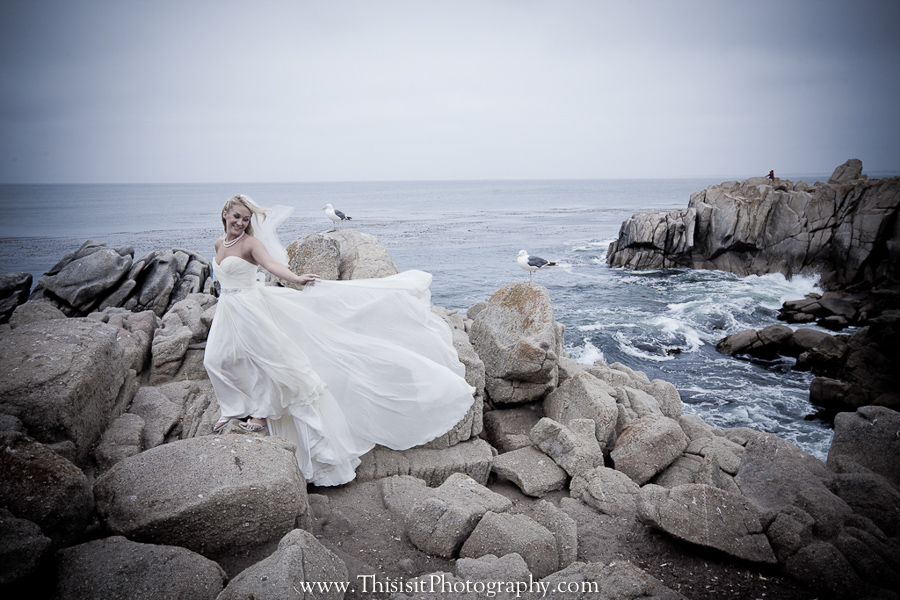 Lover S Point Beach Monterey Wedding Of Chante And Jeff San Francisco Photographer Bay Area